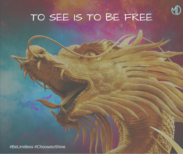 TO SEE IS TO BE FREE